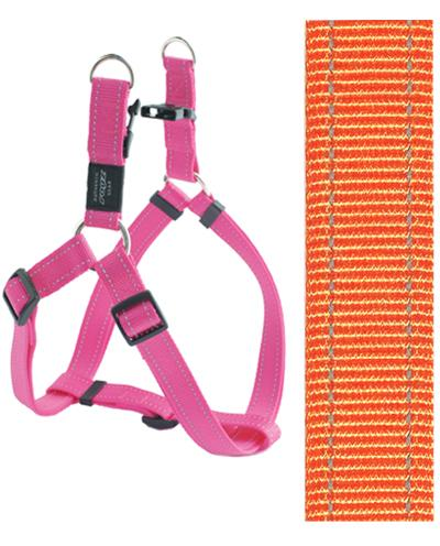 Rogz for dogs fanbelt step in hondentuig verstelbaar oranje 76 x 2 cm is eeneigentijdseentrendy step in ...