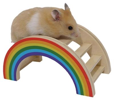 Regenboog speelbrug