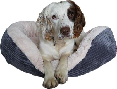 Rosewood hondenmand ovaal jumbo cord pluche grijs / creme