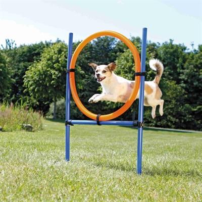 Trixie dog activity agility ring blauw / oranje