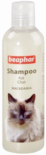 Kat>Shampoo